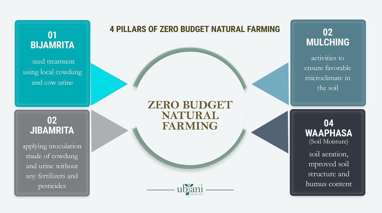 Pillars of zero budget natural farming