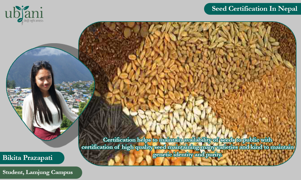 Seed Certification in Nepal